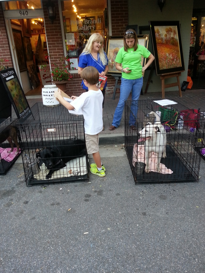 And here is a local animal rescue group hoping to find good homes for their rescues!!!