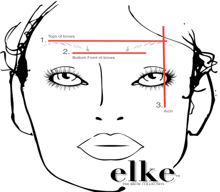 Brow Lines for Even Brows - Copy (2)